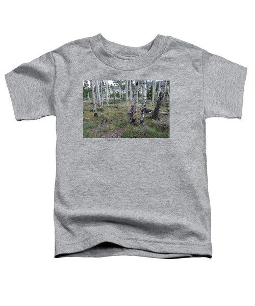 Pando  Toddler T-Shirt