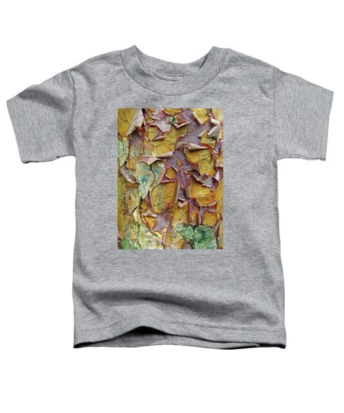 Paperbark Maple Tree Toddler T-Shirt