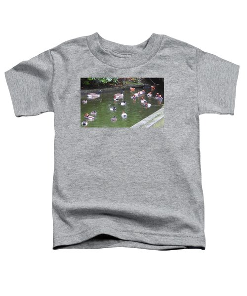 Park Waterfowl Toddler T-Shirt