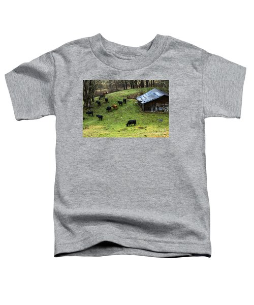 Pasture Field And Cattle Toddler T-Shirt