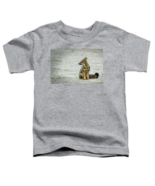 Patagonia Fox - Argentina Toddler T-Shirt