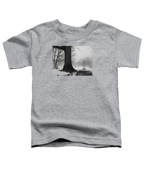 Peaceful Path Toddler T-Shirt
