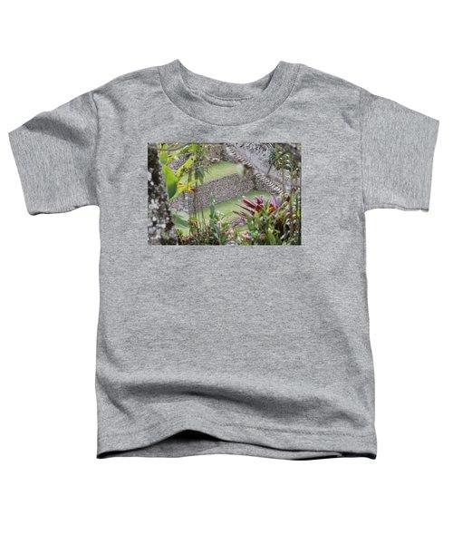 Peeking In At Machu Picchu Toddler T-Shirt