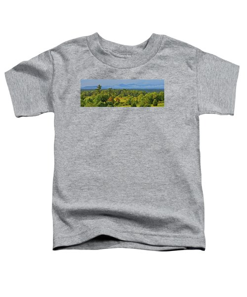 Peaks Of Otter After The Rain Toddler T-Shirt
