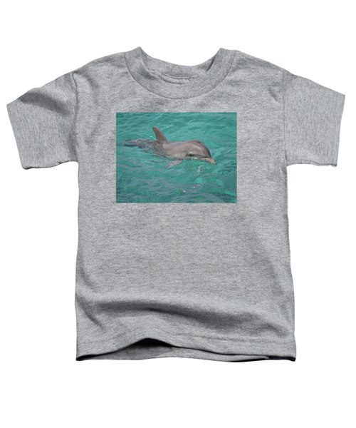 Peeking Dolphin Toddler T-Shirt