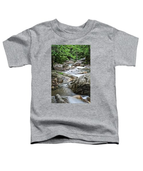 Pemigewasset River Nh Toddler T-Shirt