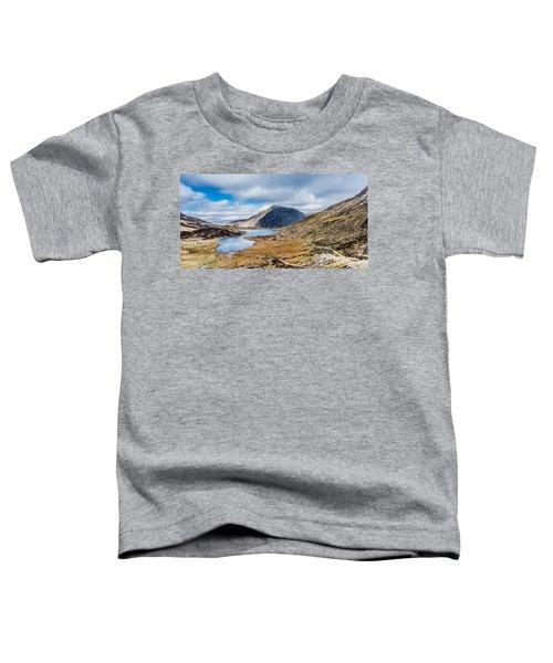 Pen Yr Ole Wen Toddler T-Shirt