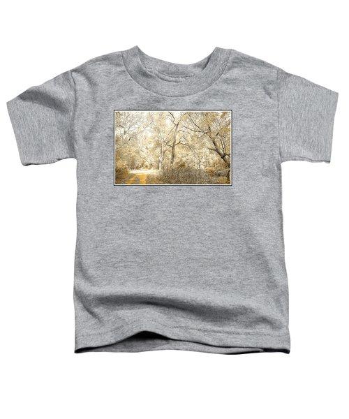 Pennsylvania Autumn Woods Toddler T-Shirt
