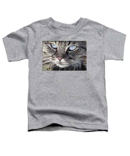 Perry The Persian Cat Toddler T-Shirt