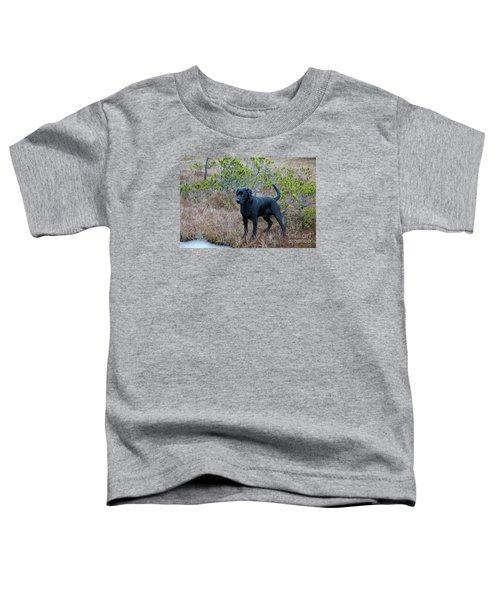 Pet Portrait - Radar Toddler T-Shirt