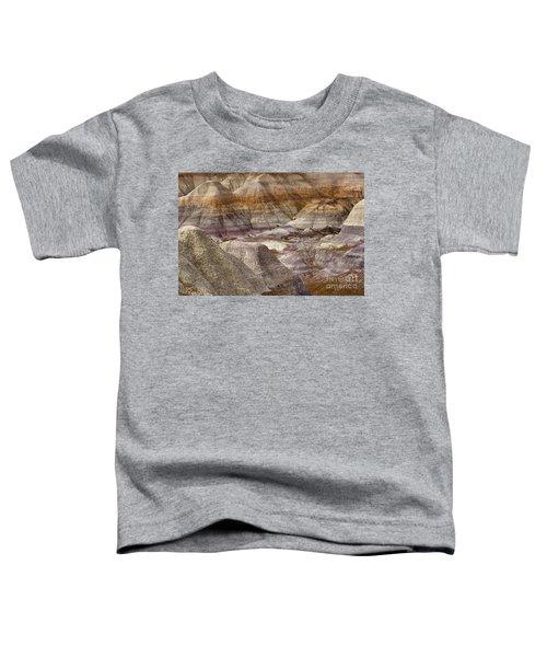 Petrified Forest National Park 4 Toddler T-Shirt