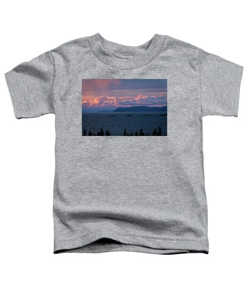 Toddler T-Shirt featuring the photograph Pic Island by Doug Gibbons
