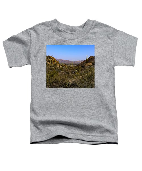 Picture Rocks 24 Toddler T-Shirt