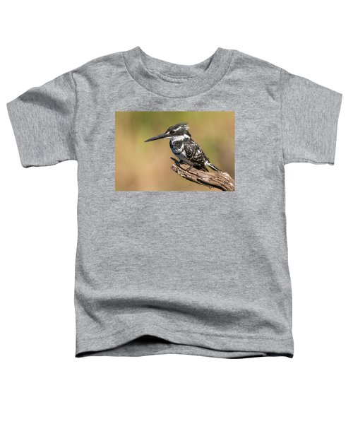 Pied Kingfisher Toddler T-Shirt