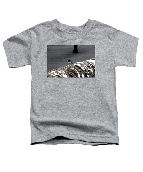 Pied Wagtail Toddler T-Shirt