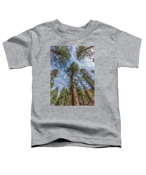 Pine Cathedral On The West Fork Toddler T-Shirt
