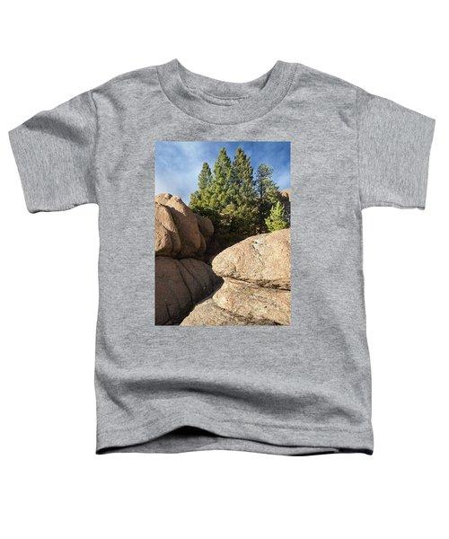 Pines In Granite Toddler T-Shirt