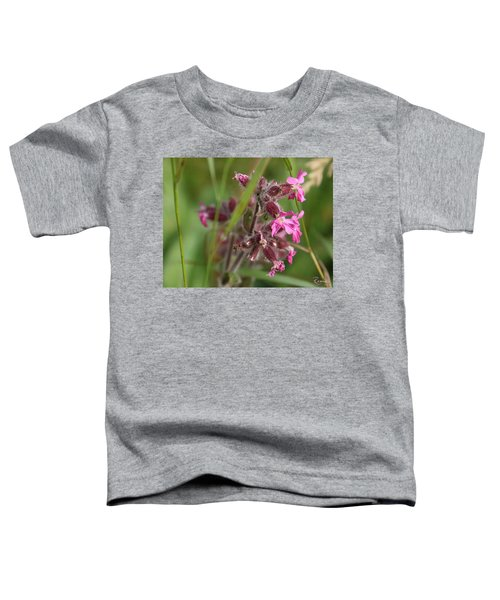 Pink Campion In August Toddler T-Shirt