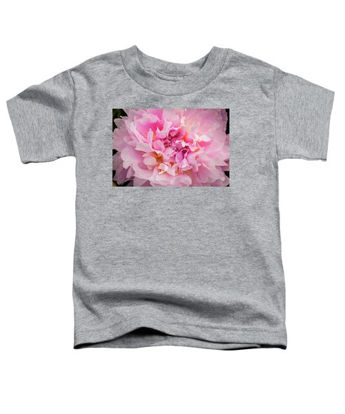 Pink Double Peony Toddler T-Shirt