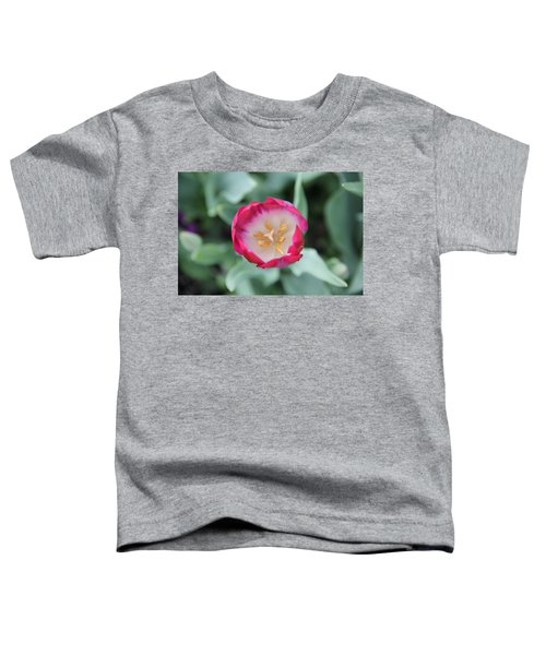 Pink Tulip Top View Toddler T-Shirt