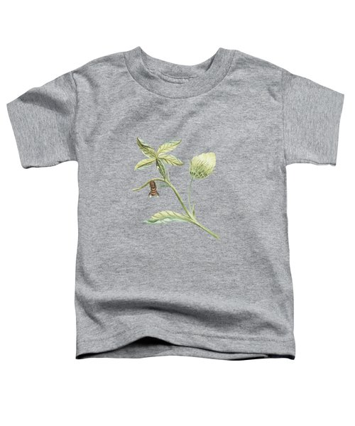 Plant With Flower And Leaves Caterpillar Changing Into A Moth By Cornelis Markee 1763 Toddler T-Shirt