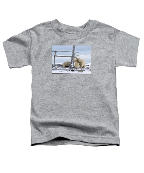 Playtime In The Arctic Toddler T-Shirt