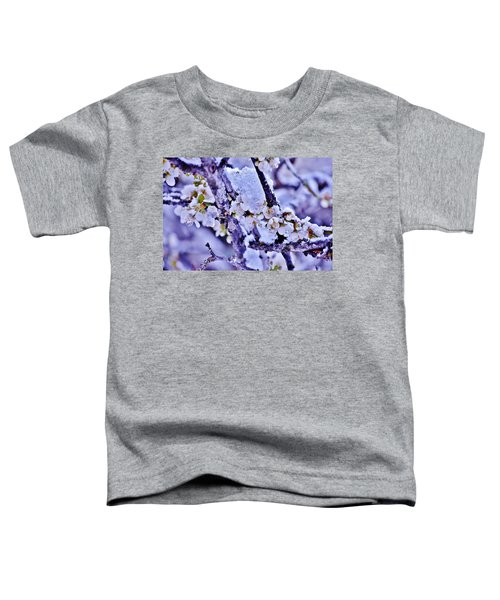 Plum Blossoms In Snow Toddler T-Shirt