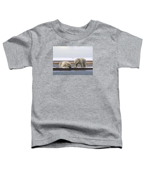 Polar Bear Zzzzzzz's Toddler T-Shirt