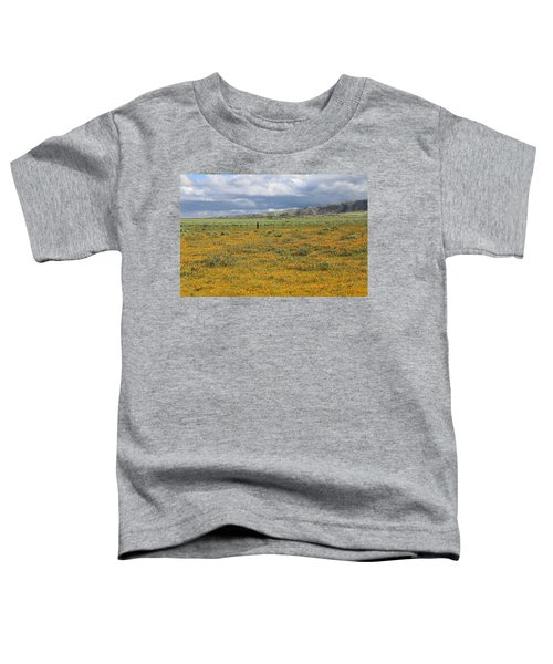 Poppies Field In Antelope Valley Toddler T-Shirt