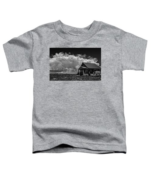 Porch View Toddler T-Shirt