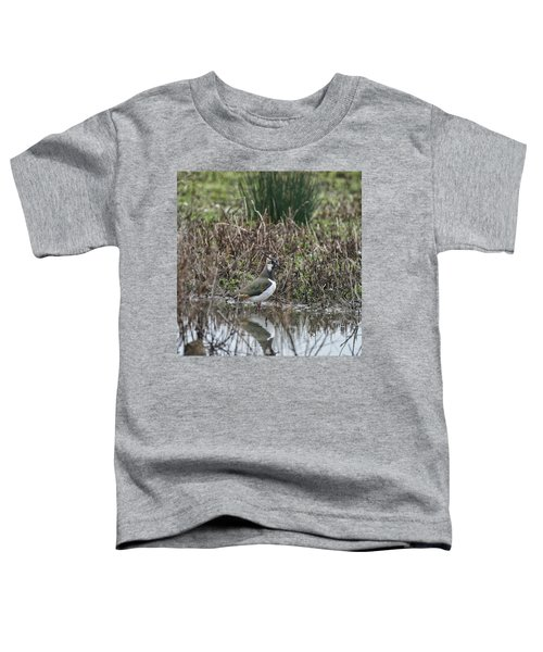 Portrait Of Beautiful Lapwing Bird Seen Through Reeds On Side Of Toddler T-Shirt by Matthew Gibson