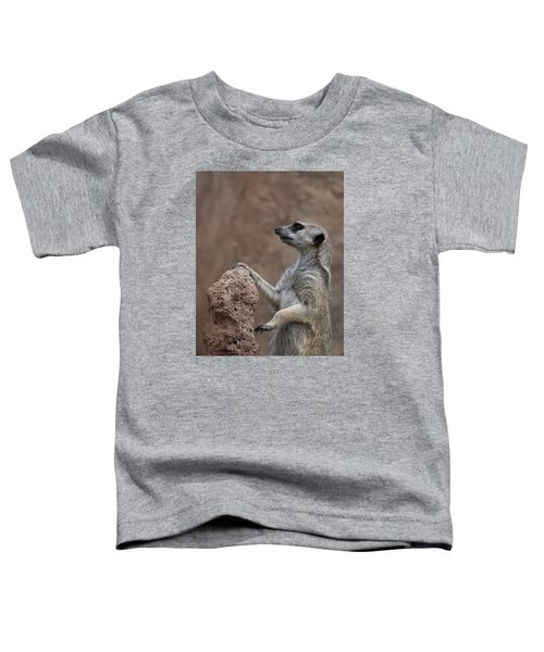 Pose Of The Meerkat Toddler T-Shirt by Ernie Echols