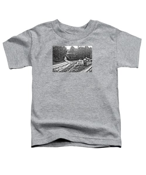 Posted On Witsell Rd Toddler T-Shirt