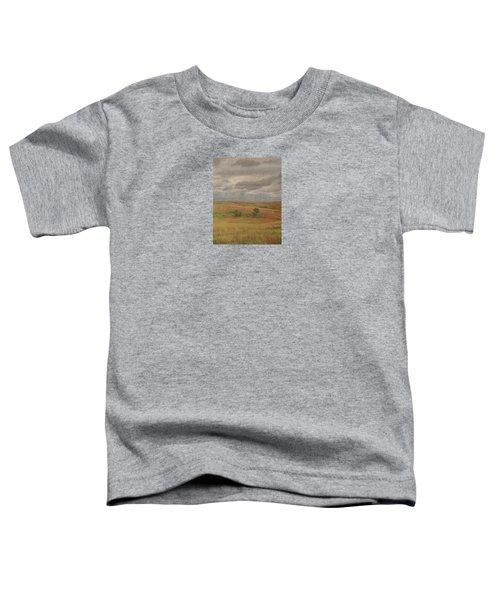 Prairie Light Toddler T-Shirt