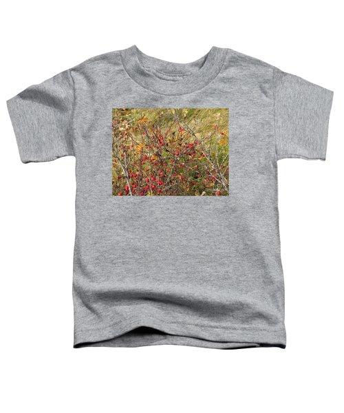 Prairie Rosehips Toddler T-Shirt