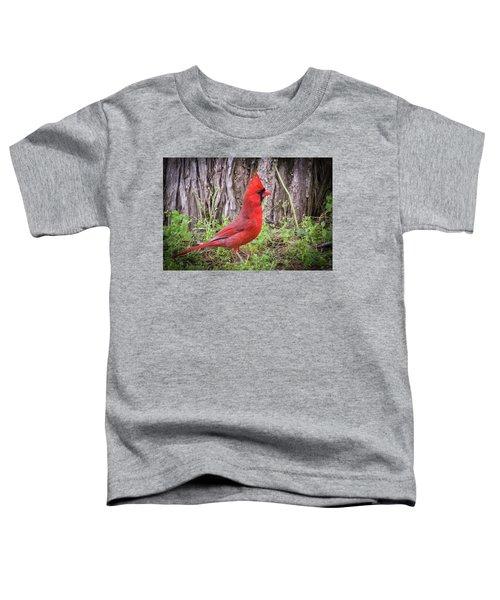 Proud Cardinal Toddler T-Shirt