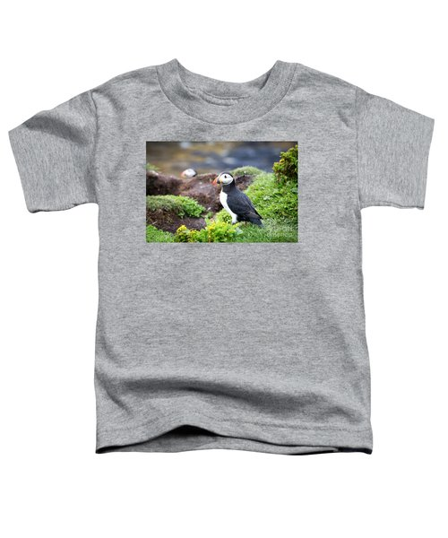 Puffin  Toddler T-Shirt by Jane Rix