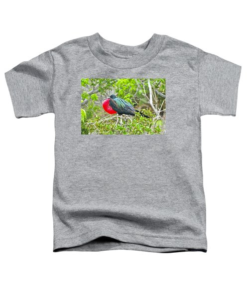 Puffing Up When Courting Toddler T-Shirt