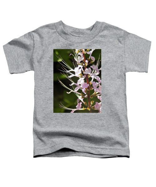 Purple Lycoris Toddler T-Shirt
