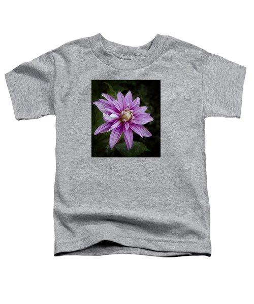 Purple Pink Dahlia Toddler T-Shirt