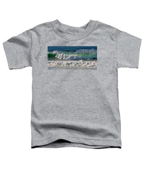 Raging Waters Toddler T-Shirt
