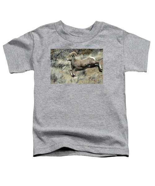 Ram In A Hurry Toddler T-Shirt