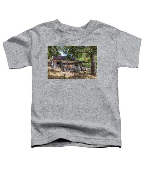 Ramsey Canyon Cabin Toddler T-Shirt