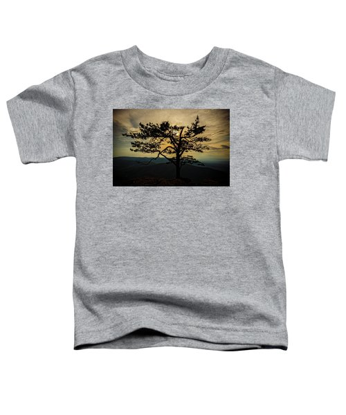 Ravens Roost Hdr Toddler T-Shirt