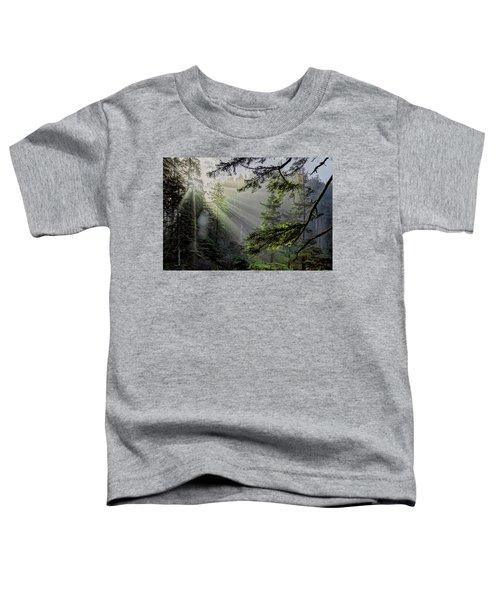 Morning Rays Through An Oregon Rain Forest Toddler T-Shirt