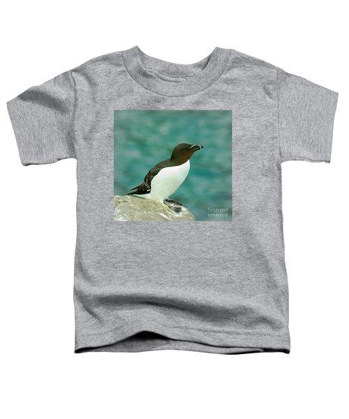 Razorbill Toddler T-Shirt by Nick Eagles