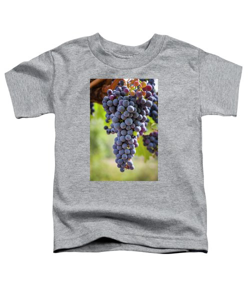 Ready For The Crush Toddler T-Shirt