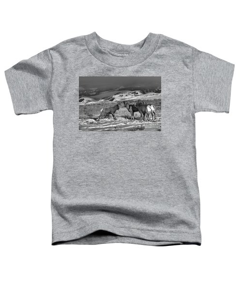 Ready To Brawl In Wyoming Toddler T-Shirt