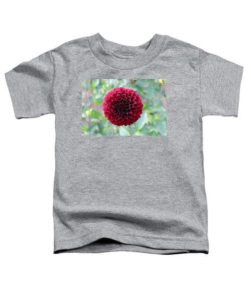 Red  Dahlia Toddler T-Shirt