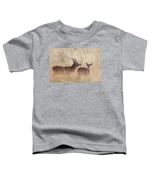 Red Deer Stag And Hind Toddler T-Shirt